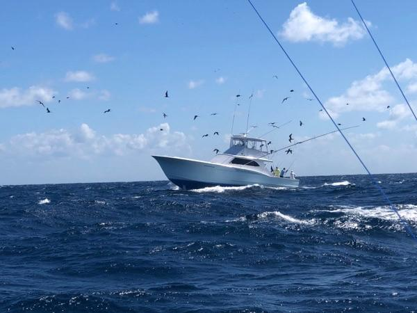 Fishing Isla Mujeres Mexico Cancun Obsession Sailfish Captain Jeff Ross Outer Banks NC